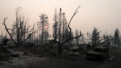 FILE PHOTO: A neighborhood destroyed by the Camp Fire is seen in Paradise, California, U.S., November 17, 2018. REUTERS/Terray Sylvester/File Photo